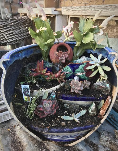 Potting Shed Broken Flowerpot Repairs - Tikun Olam