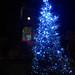 Rayleigh Christmas Tree