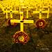 Remembrance - Aldridge   PB151791sqsm