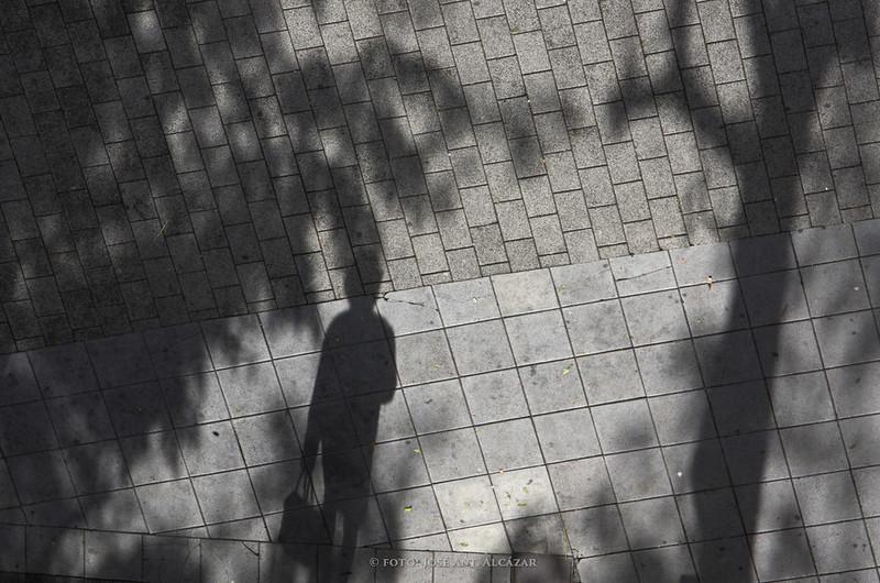 Sombras e un árbol y una persona desde un plano cenital