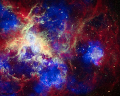 Composite of 30 Doradus, the Tarantula Nebula, contains data from Chandra (blue), Hubble (green), and Spitzer (red). Original from NASA. Digitally enhanced by rawpixel.