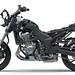 Kawasaki VERSYS 1000 SE 2021 - 8