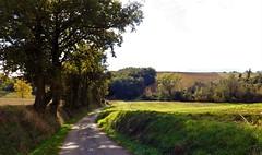 Pech-Luna : le chemin du Pontil (Occitanie, France). - Photo of Peyrefitte-sur-l'Hers