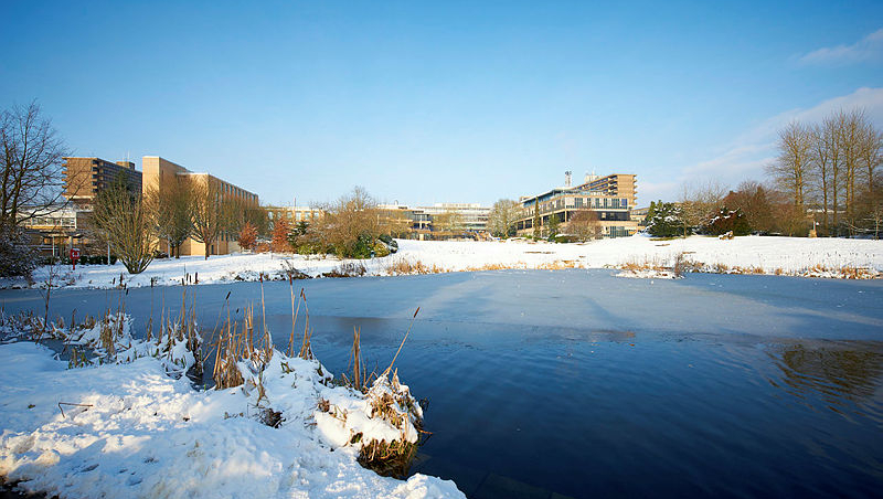 Snow covered ground and a frosty lake on campus