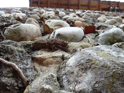 Камнт под ногами, камни на стенах