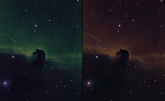 Horsehead nebula (B33) in narrowband