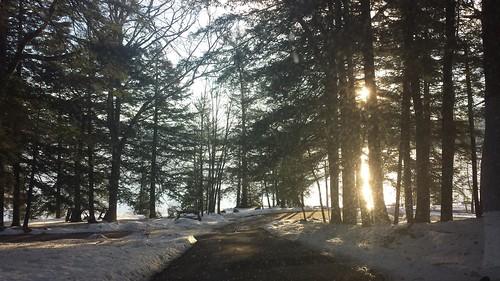 lakegeorge lake water pines fir pinetrees ice snow picnic mountains
