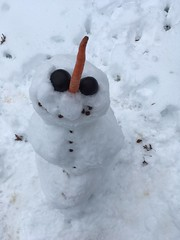 Derpiest Snowman evah!