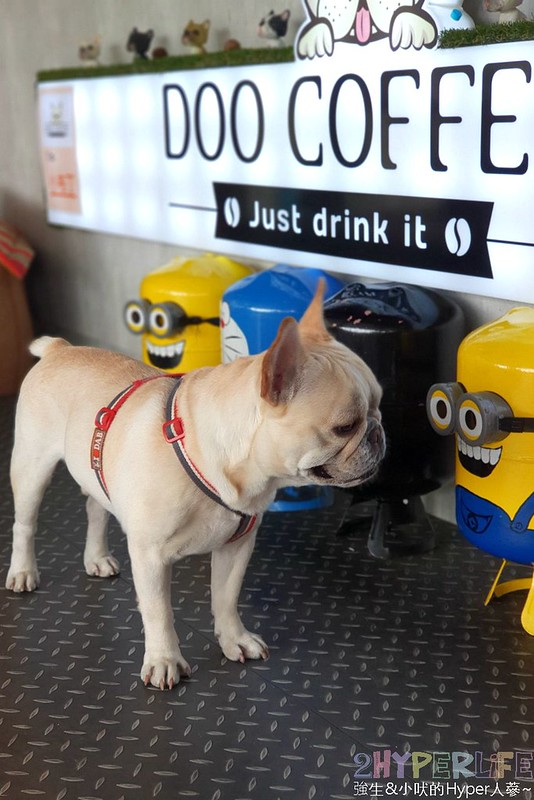 DooCoffee景觀咖啡廳,寵物友善咖啡店,寵物友善餐廳,法鬥拿鐵,苗栗下午茶,苗栗公館下午茶,苗栗公館景點,苗栗景觀餐廳,苗栗景點,苗栗美食 @強生與小吠的Hyper人蔘~