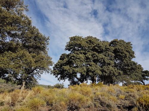 Spain Andalusia Sierra Nevada Alpujarras © Spanien Andalusien © Spain Andalusia © Andalucía La Alpujarra Granadina ©