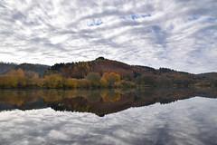 L'automne - Photo of Lichtenberg