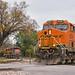 BNSF Sherman, TX by jtrainb