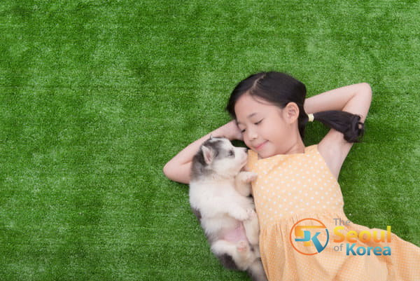 Asian Girl Bonding With Puppy Her