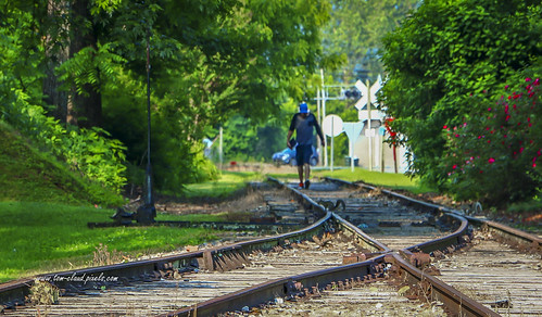 man person boy squirrel animal wildlife landscape railroad tracks railroadtracks walk share rails cityscape trees railroadcrossing andrews northcarolina usa
