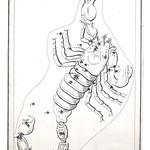 Urania's Mirror Page 39