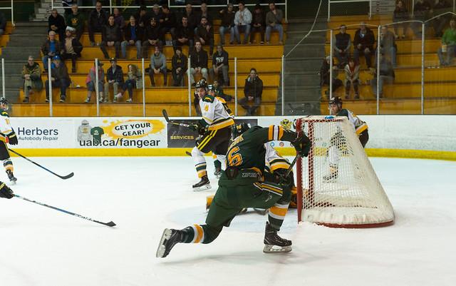 Bears Hockey-8