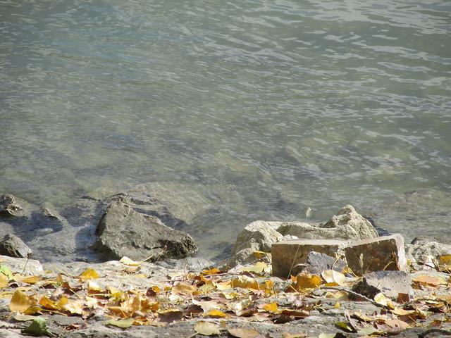 obala Dunava, Canon POWERSHOT SX160 IS