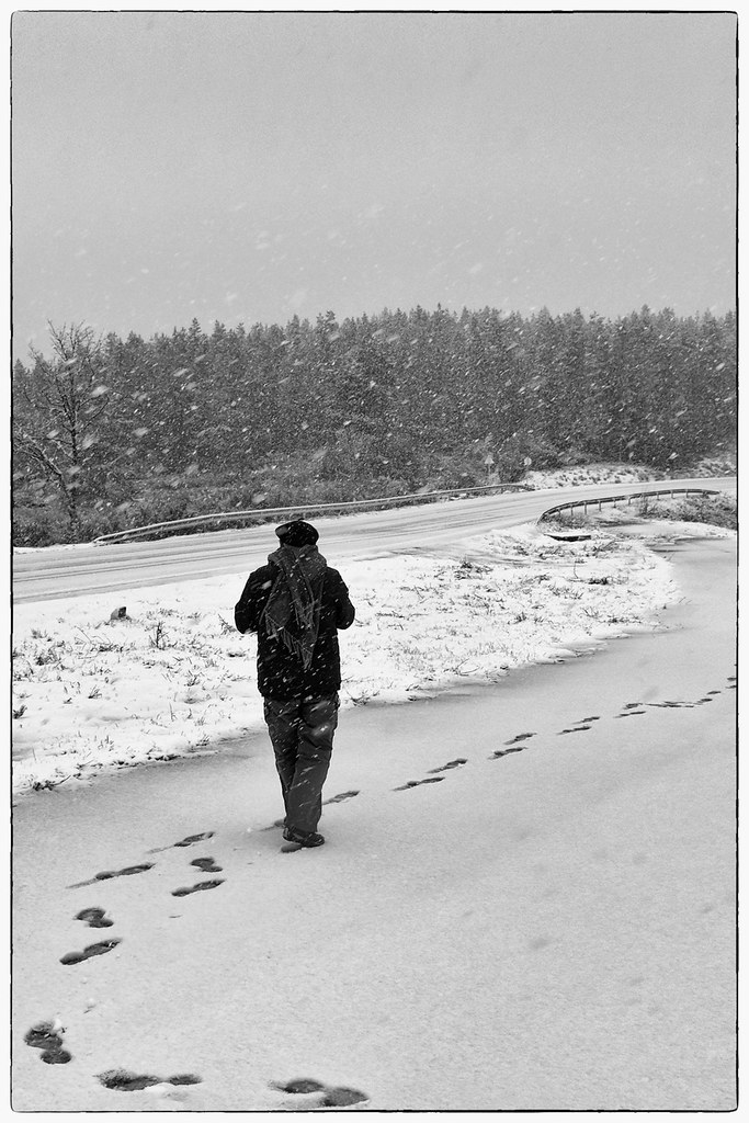 Fotógrafos em dia de nevada - Barroso (14)