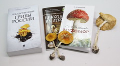 An exhibition of books related to Medicinal fungi