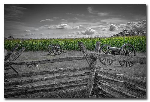 Battle of the cornfield...Antietam
