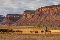 Dugout Ranch, a Nature Conservancy Property near Canyonlands National Park