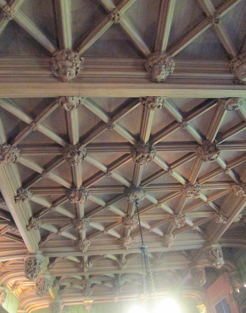 Abbotsford Library Ceiling 2