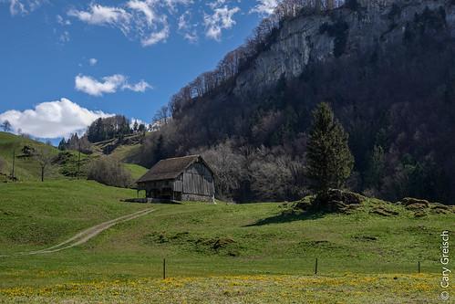 Am Seeli bei Seelisberg (Kanton Uri) (13/04/2018 -06)
