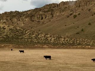 In Colorado