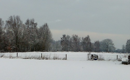 On a snow walk in Woold - Achterhoek