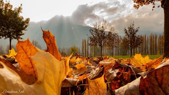 Autumn..., Canon EOS 700D, Tamron 16-300mm f/3.5-6.3 Di II VC PZD Macro