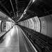 Empty II (Charing Cross, Hidden London)