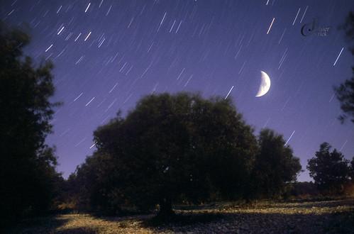 Composition nocturne, Drôme provençale, été 2003