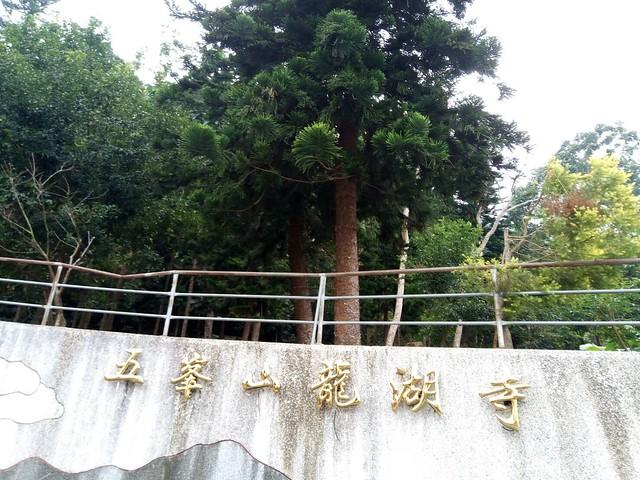 台南五峰山龙湖寺 (26)