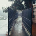 Sunnyvale, California by bior