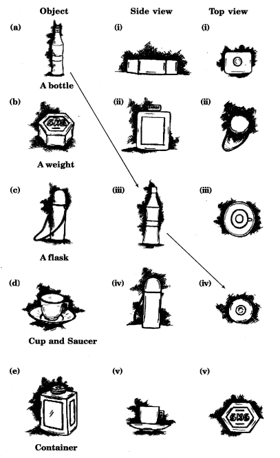 NCERT Solutions for Class 8 Maths Chapter 10 Visualising Solid Shapes 1
