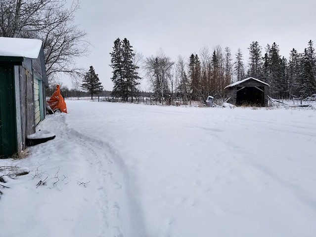 20181230.first.snowblow.smallgate.garagefront.1