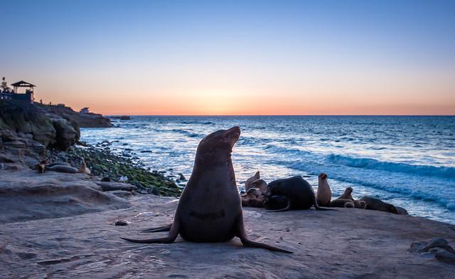 La Jolla beach, Nikon D700, AF-S Nikkor 18-35mm f/3.5-4.5G ED