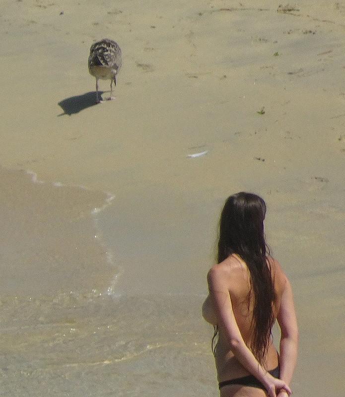 Bird-Watching Woman