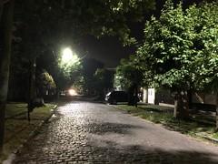 08 Ruta nocturna Lomas de Zamora