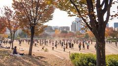 Ogimachi Park in Osaka