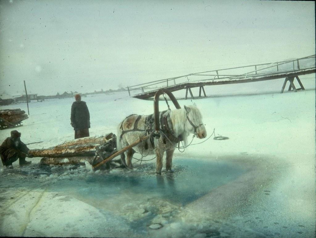 Сани с лошадьми, перевозящие дрова, попали в полынью на замерзшем озере