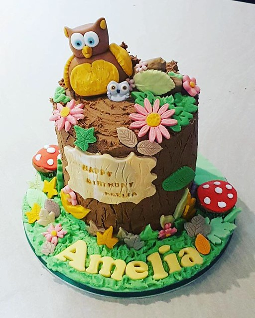 Cake by Princessbee and Cakes