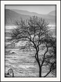 Lyme Bay rough seas