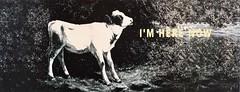 I'm here now(1996) - Paula Soares (1964)