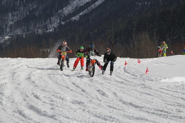 2016 02 13 skijöring gosau 01