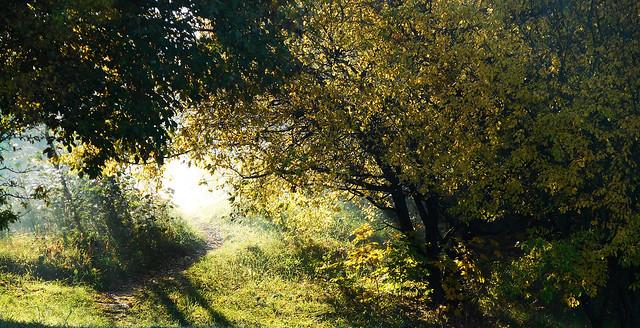 Autumn Fairytale 111