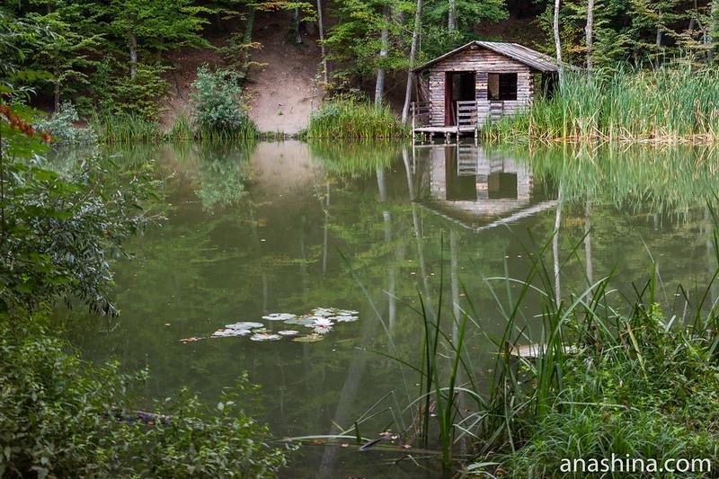 Черепаховое озеро, Ялта, Крым