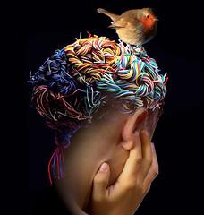 Nest of ideas