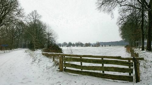Nog even genieten van de sneeuw - Foto: Tiny Post.
