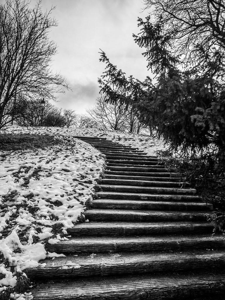 Neige sur les Buttes... 46226387514_b5195fc602_b